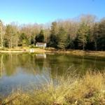 Tranquility itself - town close by yet isolated in the woods!  Maisonnette & small lake.