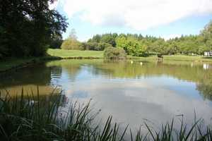 Lovely 10 acre property with two lakes.