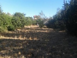 Building plot of 509 m² in a quiet area.