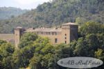 XVIIth c. château to renovate, 1600m², 50+ rooms, 2 towers, habitable apartment, garage,