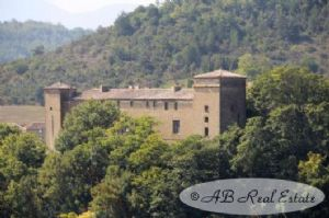 *** Bargain *** 17th C. château in need of renovation (foresee large budget), 1600m² floor