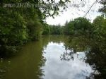 Carp Fishing Business - 5 acre lake. HUGE potential