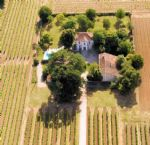 Stunning maison bourgeois in one hectare walled gardens and vines