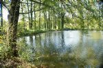 Super lake on over a hectare of land, for leisure use only.
