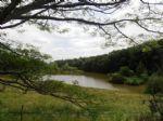 Equestrian / Fishing / B&B - 1Ha Lake on 12 Ha of Land and Woodland