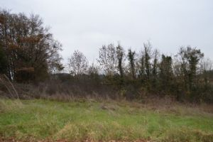Building Plot In The Very Pretty Village Of Alloue With Amenities
