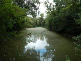 Lake for sale 3637m2 land