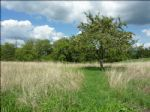 Plot of land, 10 min from Brive, in the village of Beynat