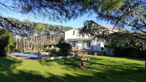 Nice home in a former stone domain, with 280 m² of living space on 3500 m² with pool and annex.