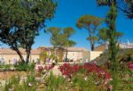 Let and managed holiday property in Calvisson