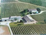 Winery with vines and several annexes near Saint Emilion