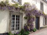 Charming stone cottage in the Medieval town of Guemene sur Scorff