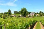 Propriété viticole AOC Côtes de Bourg