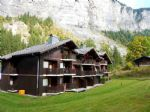 Apartment near Les Prodains Ski Lifts in Morzine