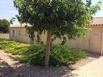 *Modern villa in a picturesque village near Pezenas. Great rental opportunity or home.