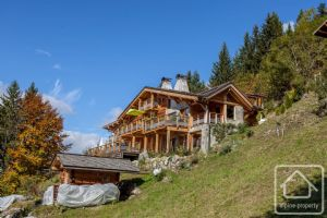Magnificent, newly renovated chalet of 3 apartments, stunning views, 10 minutes from 2 ski resorts.