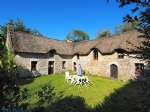 Beautiful thatched cottage on 1.5 hectares, 9 horse boxes plus training ground.
