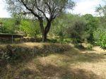 Sale Building land - Le Broc