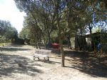 *Wonderful business opportunity close to Montpellier. 2 properties on 10,800m2 of land. Must see!