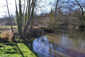 Leisure plot bordering the river Charente