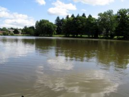 12 Acre Fully Stocked Fishing Lake with 2 Bedroom House - Fully Furnished/Equipped