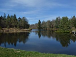 Fishing property with 3 lakes, 21 hectares, great business potential