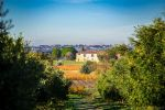 Wine domaine with organice vineyard, recent house of 650 m², house to renovate, modern cellar.