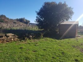 Leisure land of 3110 m² including vines, along a small stream and 15 min walk from the centre.