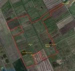 Private hunting ground Saint Bonnet sur Gironde