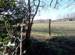 Horse farm on an 11.5 hectare site