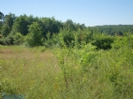 3884M2 greenfield site with building permission and a beautiful forest view, south-facing