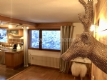 Luxurious 2 bedroom ski apartment Praz sur Arly (74120) village centre