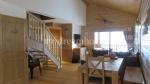 3 bedroom duplex ski apartment in Crest Voland (73590)