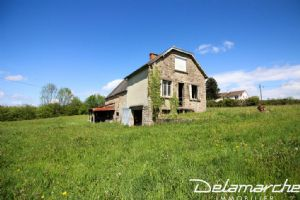 Stone house to renovate, 8170 m² of land