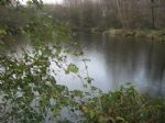 Fishing lake in the Mayenne of around 2 500 m² on a plot of just under 1.5 hectares