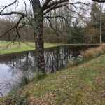 Fishing pond 7300m2 on 4.5 hectares with outline planning