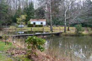 Pretty fishing lake with holiday house