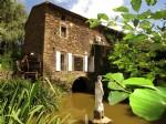 Moulin proche Villefranche d'Albi
