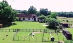 House with gite, pool, stables and land