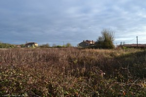 Plot Of Land On 2739m² - Close To Nanteuil en Vallée