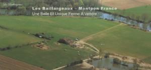 Les Baillargeaux - beautiful and unique farm with gites for sale