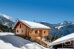 Recently renovated, alpine 4-star rental chalet with pool