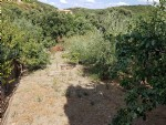 Building plot of 590 m² with water and sewage in a hamlet at 25 minutes from Béziers.