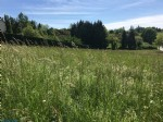 Site with building permission, surrounded by countryside, in the hills outside Terasson.