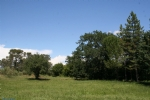Superb site with building permission, 1993m2, Nimes-Montpellier