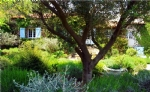 Luxury Farmhouse With Pool In Beautiful Setting Nr Ceret