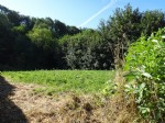 building plot of 1660m² (1/3 acre) between Beaurainville (8kms) and Montreuil (12kms).