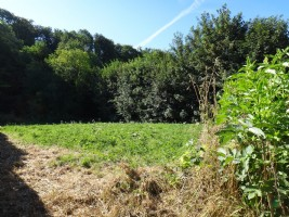 Building plot of 1660m2 (1/3 acre) between Beaurainville (8kms) and Montreuil (12kms).
