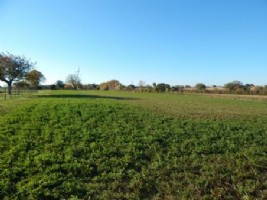 Plot Of Land for sale 2850m2 land