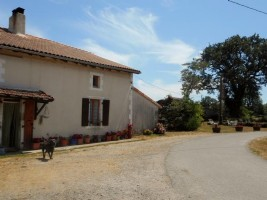 Equestrian Property for sale 4 bedrooms ,48849m2 land ,near to river/stream,Over 1 acre land